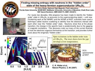 "Finding missing entropy with neutrons in the ""hidden order"""