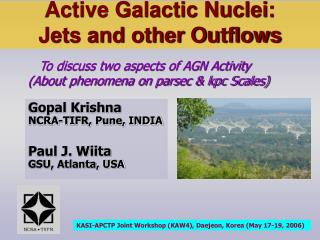 Active Galactic Nuclei:  Jets and other Outflows