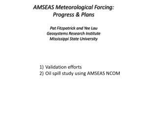 AMSEAS Meteorological Forcing: Progress & Plans Pat  Fitzpatrick and Yee Lau