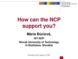 How can  the  NCP  support you?
