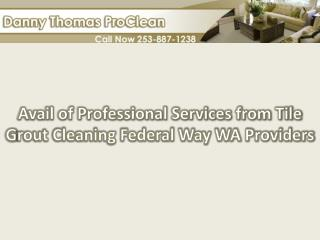 Avail of professional services from tile grout cleaning Fede