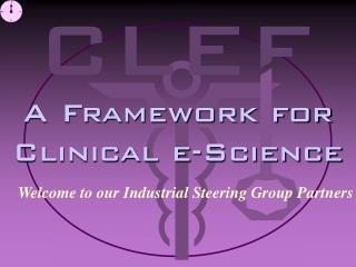 A Framework for Clinical e-Science