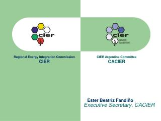 Executive Secretary, CACIER