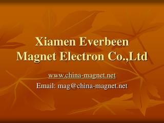 Permanent Magnets Products