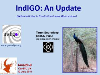 IndIGO: An Update