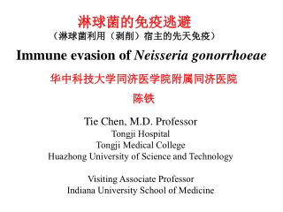 Immune evasion of  Neisseria gonorrhoeae