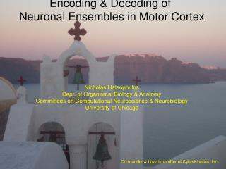 Encoding  Decoding of  Neuronal Ensembles in Motor Cortex          Nicholas Hatsopoulos Dept. of Organismal Biology  Ana