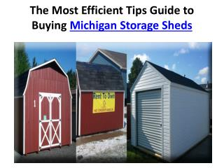 The Most Efficient Tips Guide to Buying Michigan Storage She