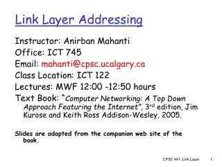 Link Layer Addressing