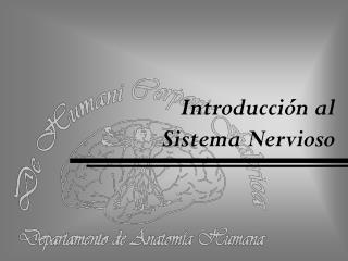 Introducción al  Sistema Nervioso