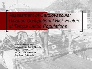 Assessment of Cardiovascular Disease Occupational Risk Factors of Tampa Latino Populations