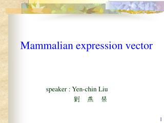 Mammalian expression vector                speaker : Yen-chin Liu 劉    燕    琹