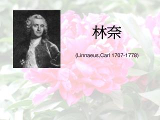 林奈 (Linnaeus,Carl 1707-1778)
