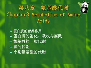 第八章  氨基酸代谢 Chapter8  Metabolism of Amino Acids