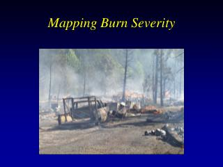 Mapping Burn Severity