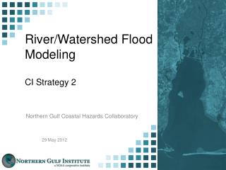 River/Watershed Flood Modeling CI Strategy 2