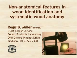 Non-anatomical features in wood identification and systematic wood anatomy