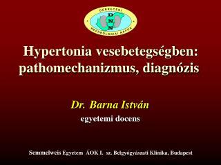 Hypertonia vesebetegségben: pathomechanizmus, diagnózis