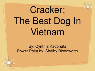 Cracker: The Best Dog In Vietnam