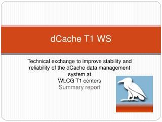 dCache T1 WS