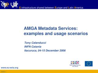 AMGA Metadata Services:  examples and usage scenarios