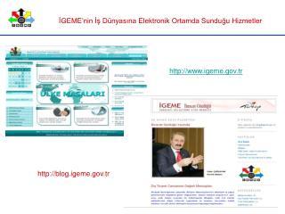 İGEME'nin İş Dünyasına Elektronik Ortamda Sunduğu Hizmetler
