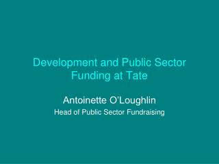 Development and Public Sector Funding at Tate