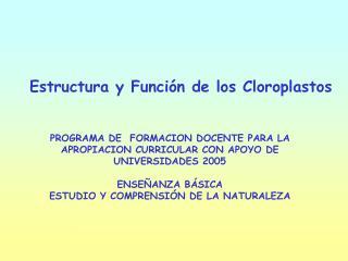 Estructura y Función de los Cloroplastos