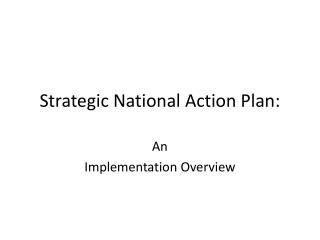 Strategic National Action Plan:
