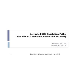Corrupted DNS Resolution Paths:  The Rise of a Malicious Resolution Authority