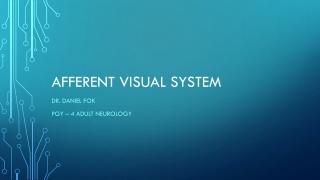 ACUTE MONOCULAR BLINDNESS  BASIC NEURO OPHTHALMOLOGY