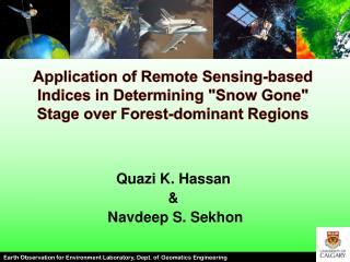 Quazi  K. Hassan &   Navdeep S.  Sekhon