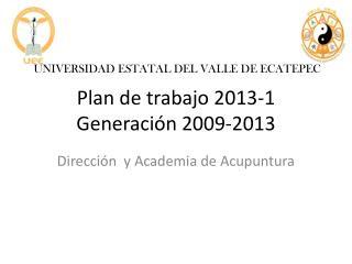 Plan de trabajo 2013-1 Generación 2009-2013