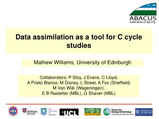 Data assimilation as a tool for C cycle studies