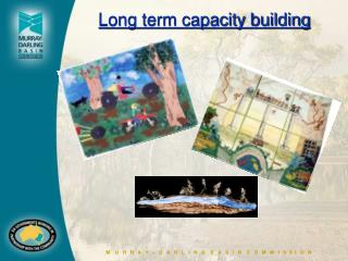Long term capacity building