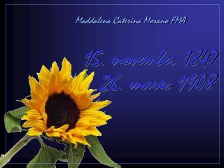 15 .  novemb er  1847