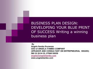 BUSINESS PLAN DESIGN: DEVELOPING YOUR BLUE PRINT OF SUCCESS Writing a winning business plan