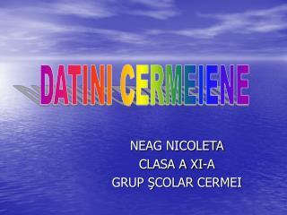 NEAG NICOLETA CLASA A XI-A GRUP ŞCOLAR CERMEI