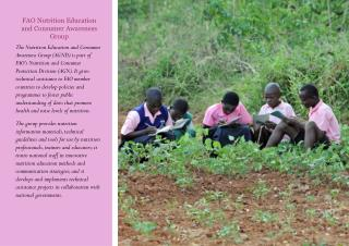 FAO Nutrition Education and Consumer Awareness Group
