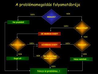 A probl�mamegold�s folyamat�br�ja