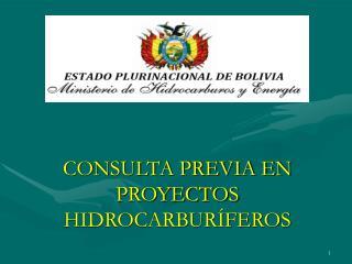 CONSULTA PREVIA EN PROYECTOS HIDROCARBURÍFEROS