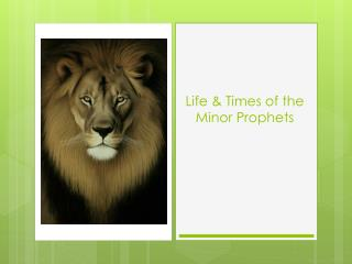 Life & Times of the Minor Prophets