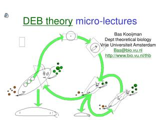 DEB theory  micro-lectures