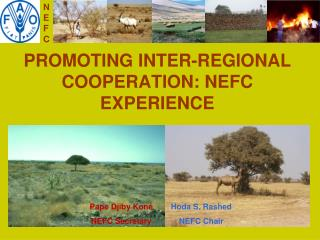 PROMOTING INTER-REGIONAL COOPERATION: NEFC EXPERIENCE