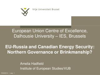 Amelia Hadfield  Institute of European Studies/VUB