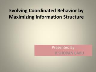Evolving Coordinated Behavior by Maximizing Information Structure
