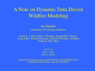 A Note on Dynamic Data Driven Wildfire Modeling