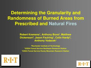 Determining the Granularity and Randomness of Burned Areas from Prescribed and  Natural Fires