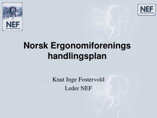 Norsk Ergonomiforenings handlingsplan