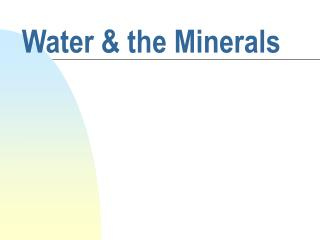 Water & the Minerals